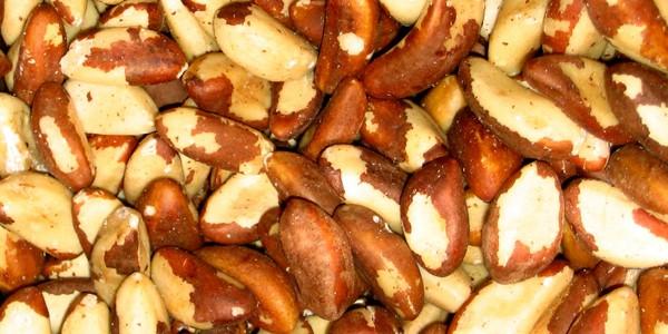 nuts555