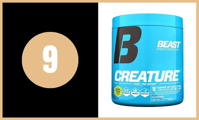 Best Creatine Supplements - Beast Creature