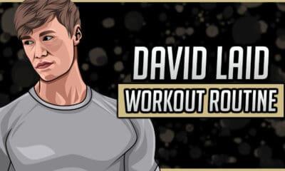 David Laid's Workout Routine & Diet