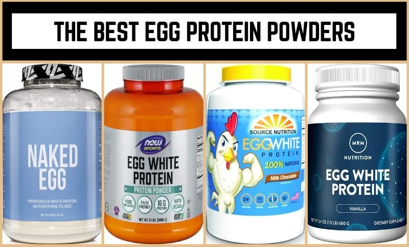 The Best Egg Protein Powders