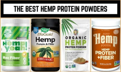 The Best Hemp Protein Powders