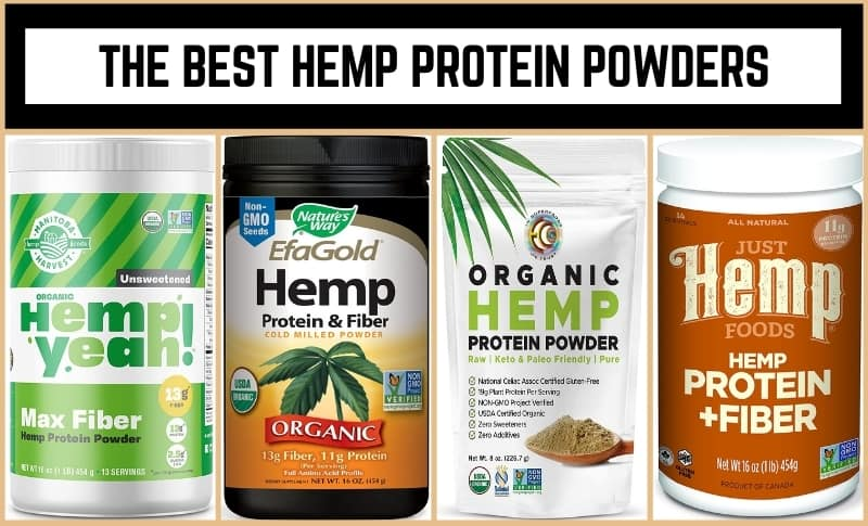 The Best Hemp Protein Powders