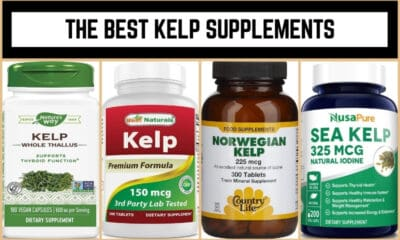 The Best Kelp Supplements