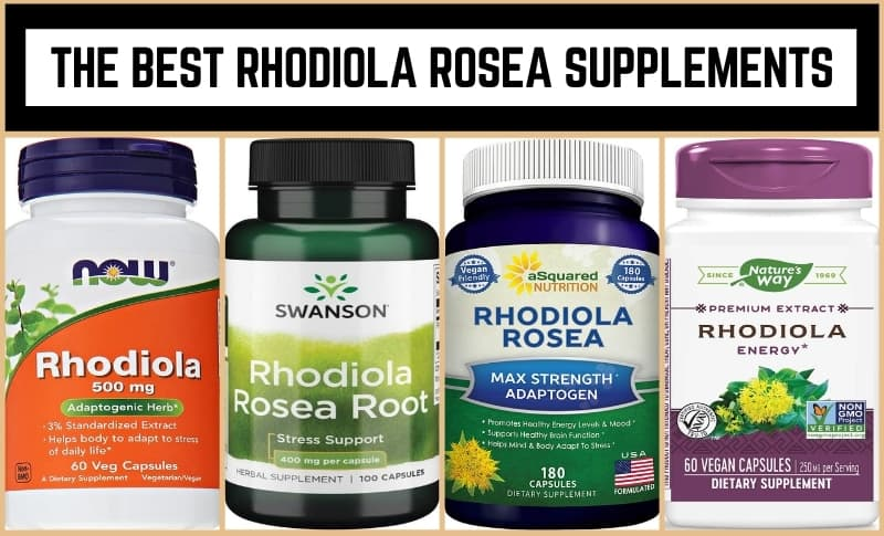 The Best Rhodiola Rosea Supplements