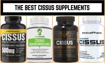The Best Cissus Supplements