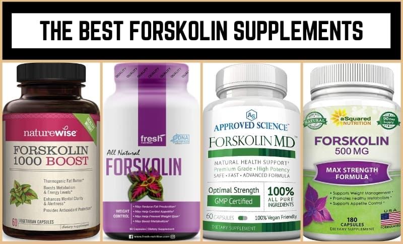 The Best Forskolin Supplements