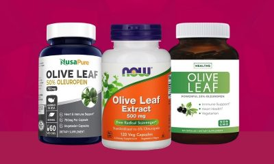 The Best Olive Leaf Supplements